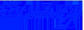 Logo LondonEye Para Paypal